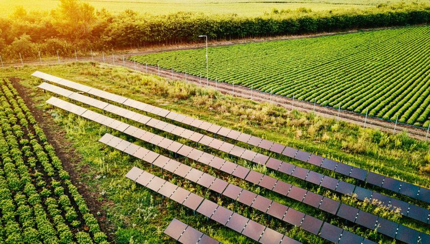 Rural Energy for America Program